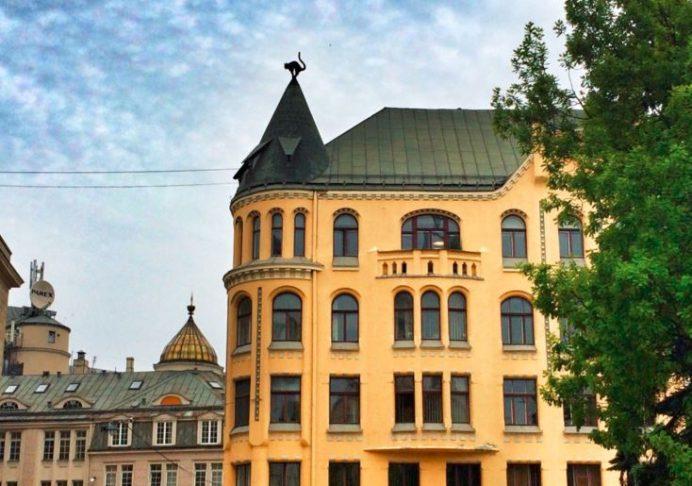 Kedi Evi-Riga-Letonya