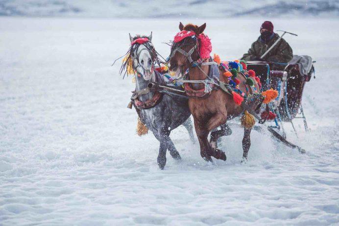 Atlı Kızak Turları kars