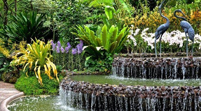 Orkide-Bahçesi