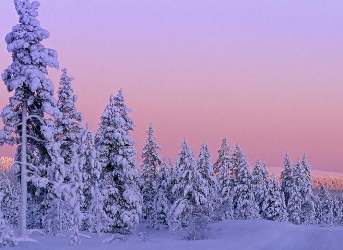 Finlandiya_doga_manzara