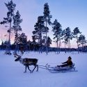 Finlandiya_egitim