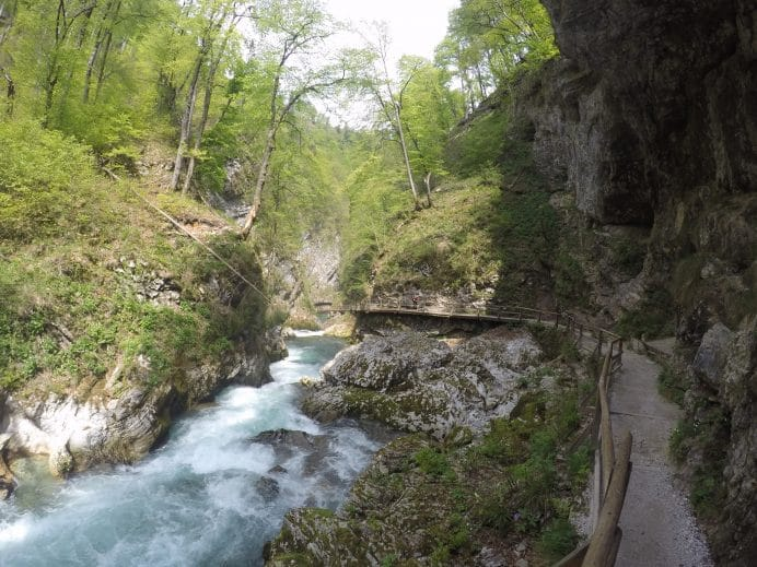 slovenya_vintgar_gorge_kanyonu
