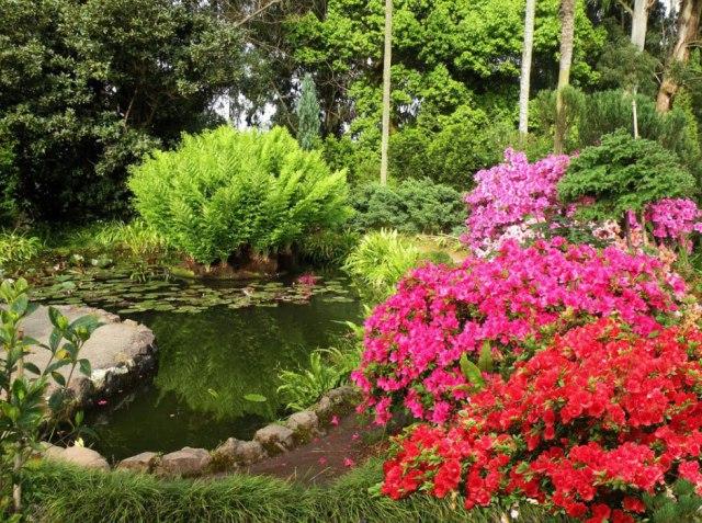 batum-botanik-park