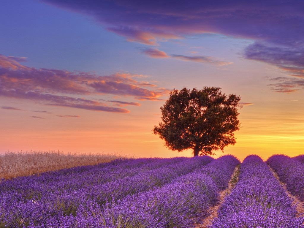En Güzel Manzaralar 30 Dünyanın En Güzel Manzaraları