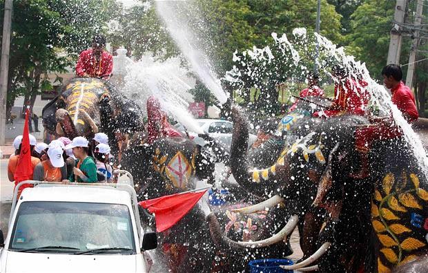 su-festivali