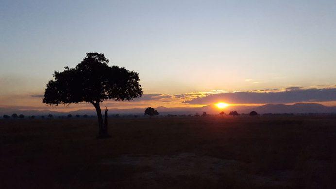 Mikumi Milli Parkında gün batımı - Tanzanya.
