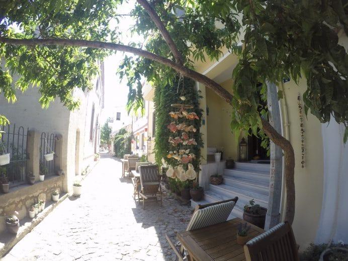 ağaç bahçeli sokak