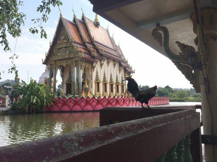 Wat_Pai_Laem_Koh_Samui
