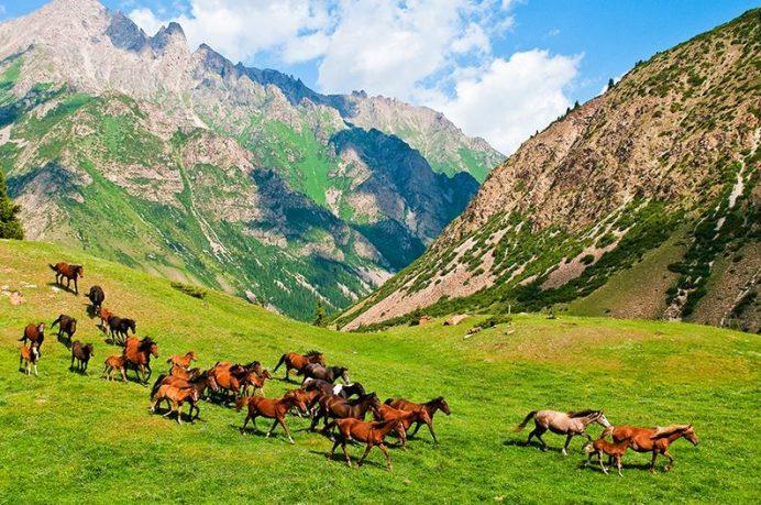 kırgızistan_hakkinda