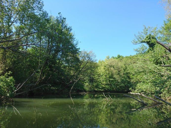 Ağva-Göksu-Nehri