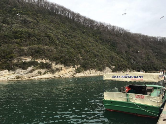 Ağva-yeşilçay-nehri