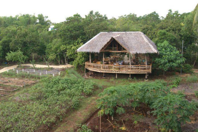 Bohol-Coco-Farm-Hostel