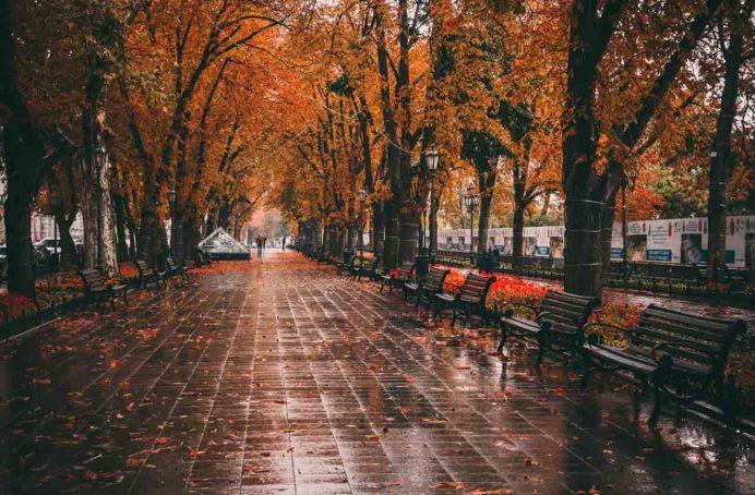 odessa_deribasovskaya_caddesi_pasaj_gezilecek_yerler_ukrayna_gezisi_ukrayna_havayolları_street_gece_park_hayatı_geceleri_kadınları_kiev
