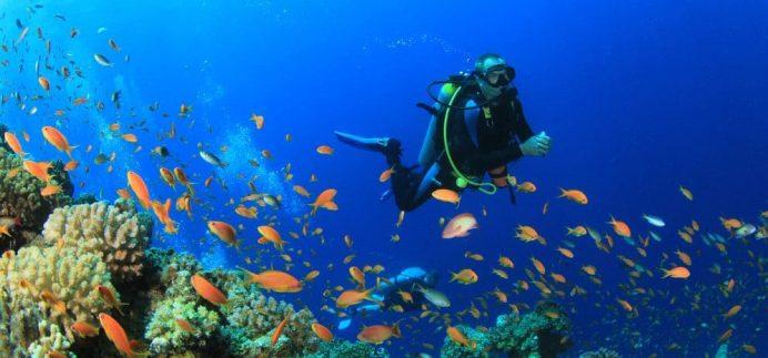 maldiv-resifleri