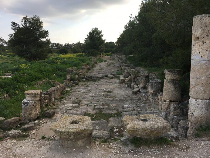 soli-antikkenti-kıbrıs