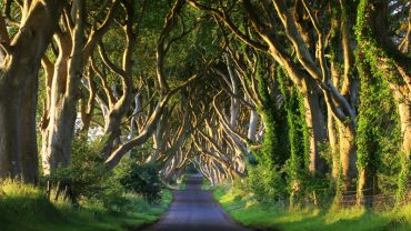 king's_road_game_of_thrones
