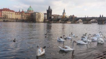 Prag-Nerede-Nasıl-Gidilir