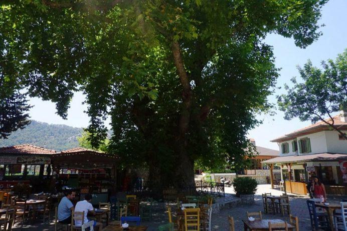 marmaris_cinaralti_restaurant