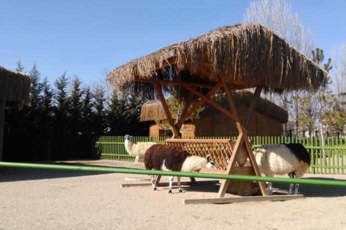 sazova-parki-hayvanat-bahcesi