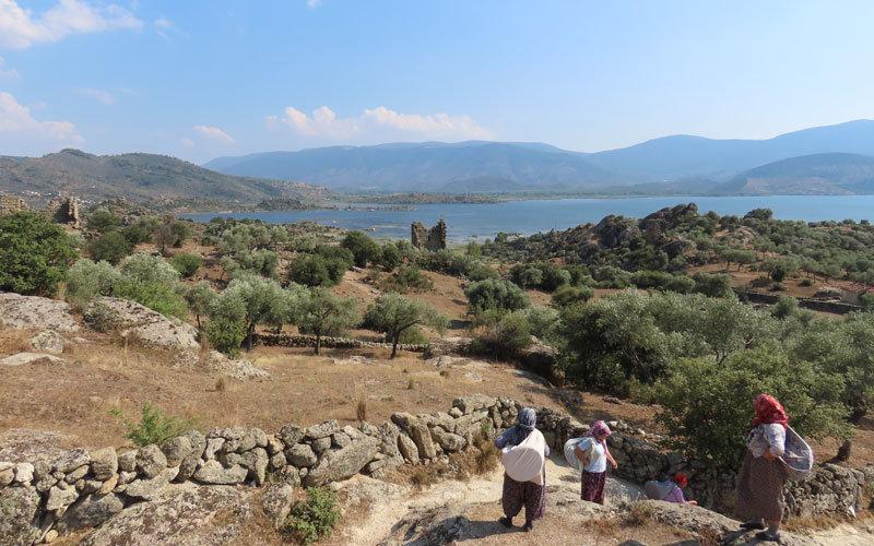 Aydın Didim Bafa Gölü